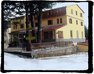 Hotel dei Pini Lorica